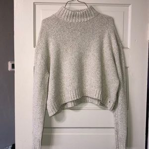 American Eagle crop turtle neck sweater